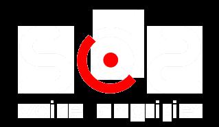 logo-003-tsbg-light.png
